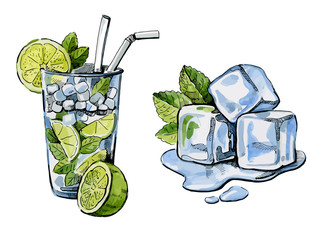 vector cocktail and ice