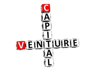 3D Crossword Venture Capital on white background