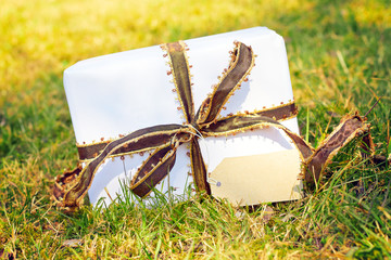 white gift on green meadow with space for you text