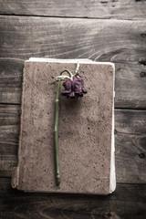 Single flower on vintage  book on wood background