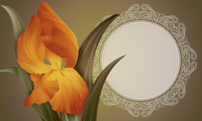 Fantasy Orange Iris on colorful backdrop with lace vintage frame