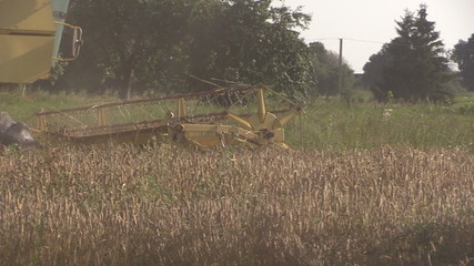yellow harvester combine work in grain field on end summer