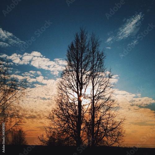 Весенний закат - 80081183