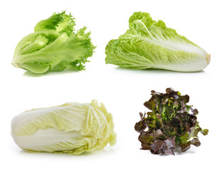 lettuce ,chinese cabbage on a white background
