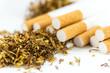 zigaretten mit tabak - 80088733