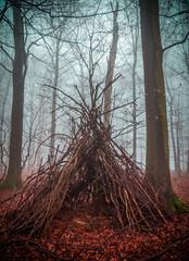 Hexenhaus im Wald mit Nebel