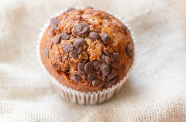 Homemade muffin with chocolate chips