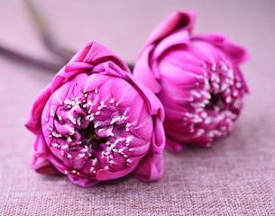 lotus on linen