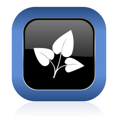 leaf square glossy icon nature sign