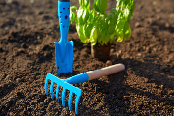 Blue garden tools