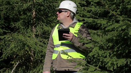 Forest engineer working with tablet PC near fir