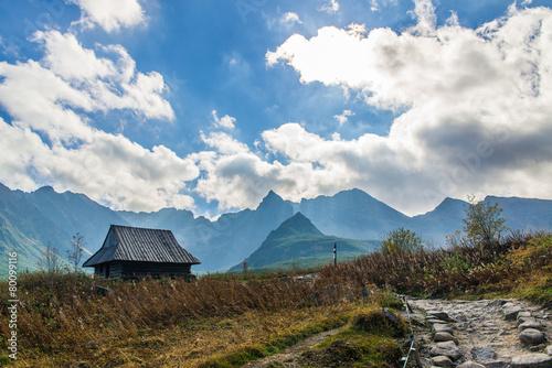Hala Gasienicowa in Tatra Mountains - 80099116
