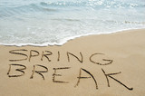 spring break on the beach