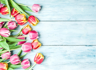 Pink and red tulips on a wooden background.