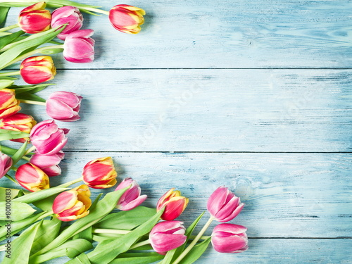Tuinposter Tulp Pink and red tulips on a wooden background.