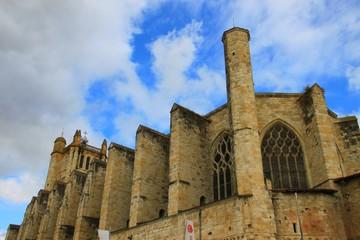 Cathédrale Saint-Pierre de Condom