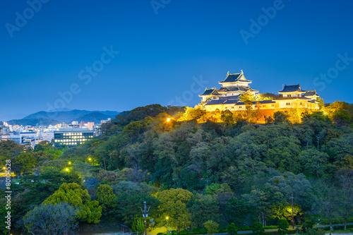 Foto op Plexiglas Japan Wakayama, Japan at the Castle