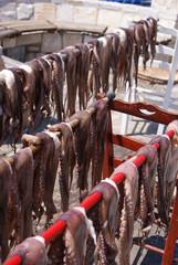 Octopus, Naxos, Greece