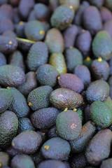 Fresh avocado on market