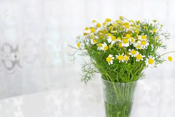 窓辺に置いたカモミールの花