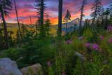Beautiful Vista of Mount Hood in Oregon, USA. - 80108759