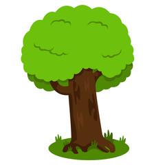 Illustrator of tree