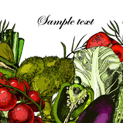 Organic Vegetables. Still-life with fresh broccoli, tomatoes