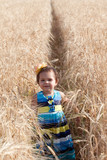 little girl goes on a footpath in the field of ripe wheat