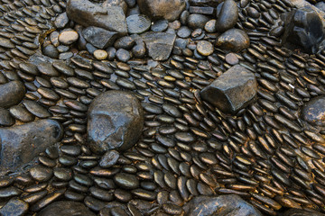 Black river stones in different shapes background and texture.