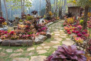Mae Fah Luang Garden. Chiangrai ,Thailand