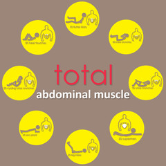 adbomianal muscle on yellow circle