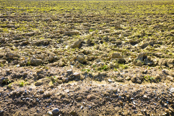 Closeup of a plowed field with the presence of stones with copy
