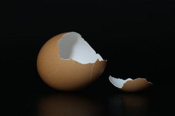 bruine eierschaal