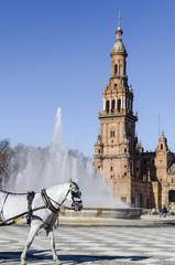 Caballo blanco en La Plaza de España de Sevilla. España.