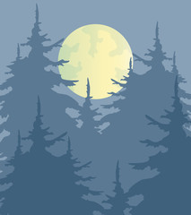 Night forest.