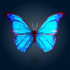 Abstract blue butterfly on deep blue background