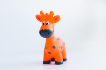 оранжевый жираф