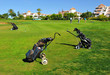 Playing golf, Huelva, Spain - 80127707