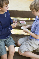 Two brothers playing cards.