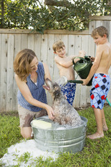 A family in their garden, washing a dog in a tub.