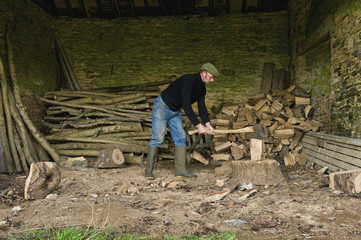 A man chopping wood with an axe, a pile of logs and chopped wood.
