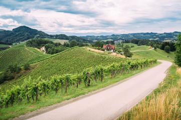 Wine Trail in Southern Styria