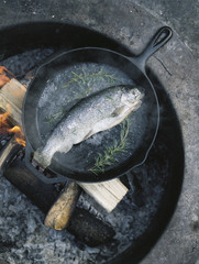 Fish in a frying pan over an outdoor fire.