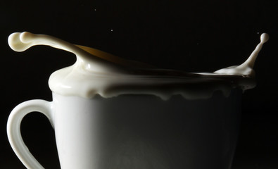 Milk splashing out of a cup on black background