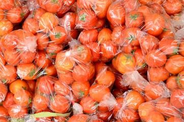 tomatoes (Lycopersicon esculentum)
