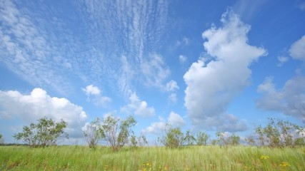 Clouds fly on blue sky over green grass, time lapse