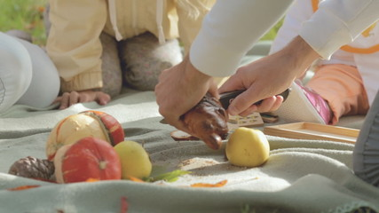 Close-up of cutting bread with poppy on a picnic