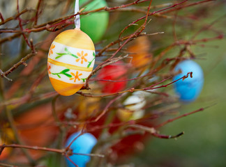 Easter eggs hanging on a bush