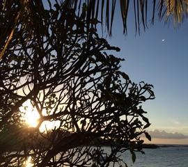 Coucher de soleil a l'ile Maurice