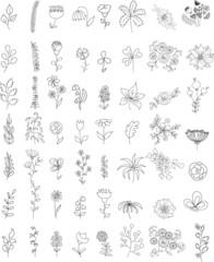 Набор цветами свадеб графического комплекте- рука рисунок вектор